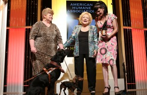 American Humane Association Hero Dog Awards 2013